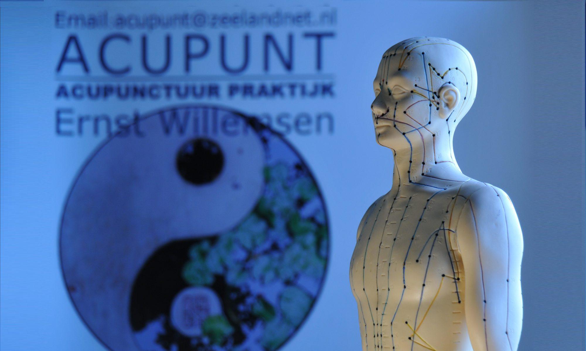 Acupunt Acupunctuur Praktijk
